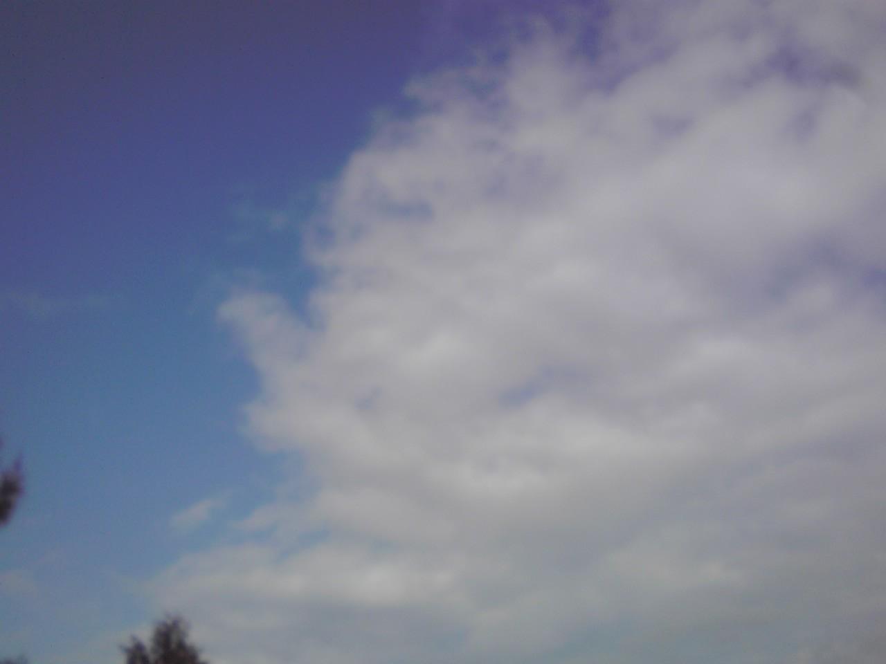 フロム沖縄♪